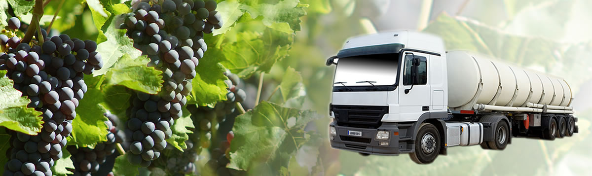 Eurosud France specialises in bulk sales by tanker lorries, containers and shipping for the wine producing and alcohol industries.